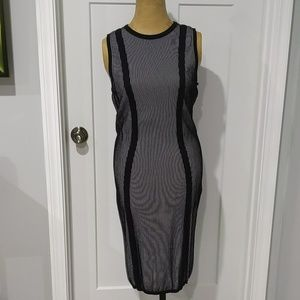 Fitted Shift Dress